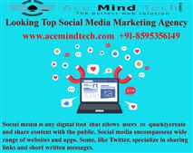 Best Social Media Marketing Company in Delhi Offering High Quality Services