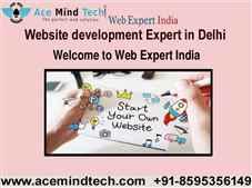 Should I hire a Website development Expert